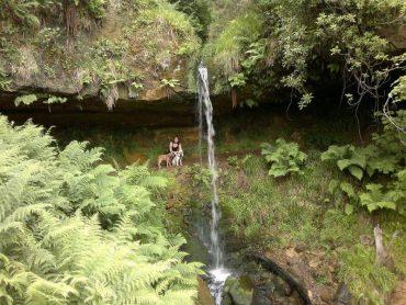 Mapsie Den Waterfall